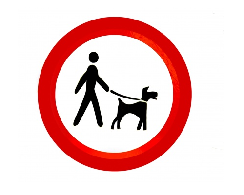 Personal Injury: How To Claim Against Dog Attacks